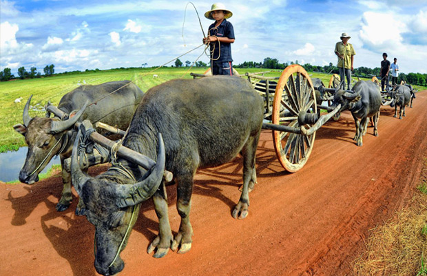 An Introduction to the Khmer culture tour