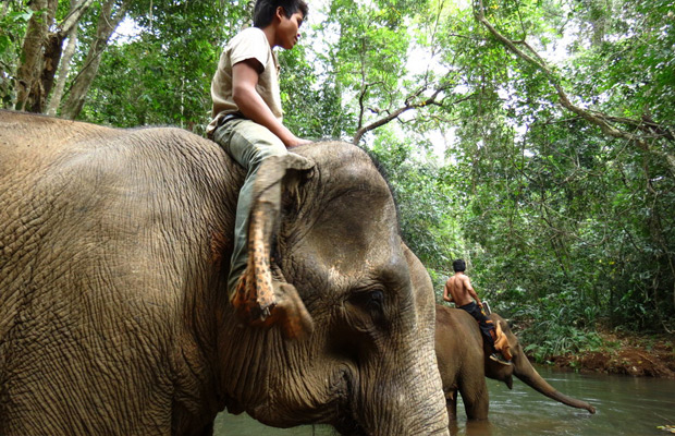 Excursion to Mondulkiri tour 5Days
